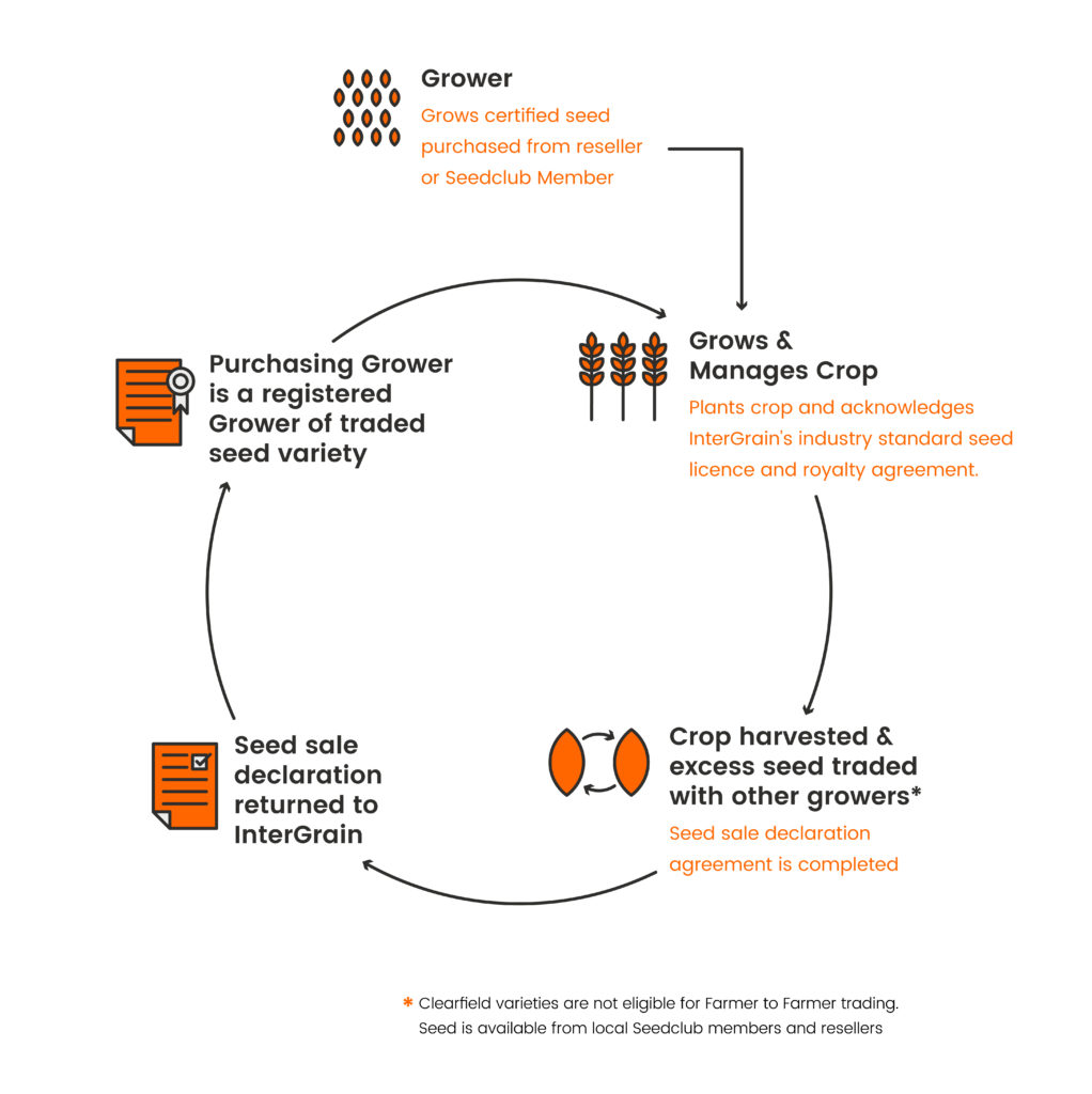 An infographic explaining how Intergrain works.
