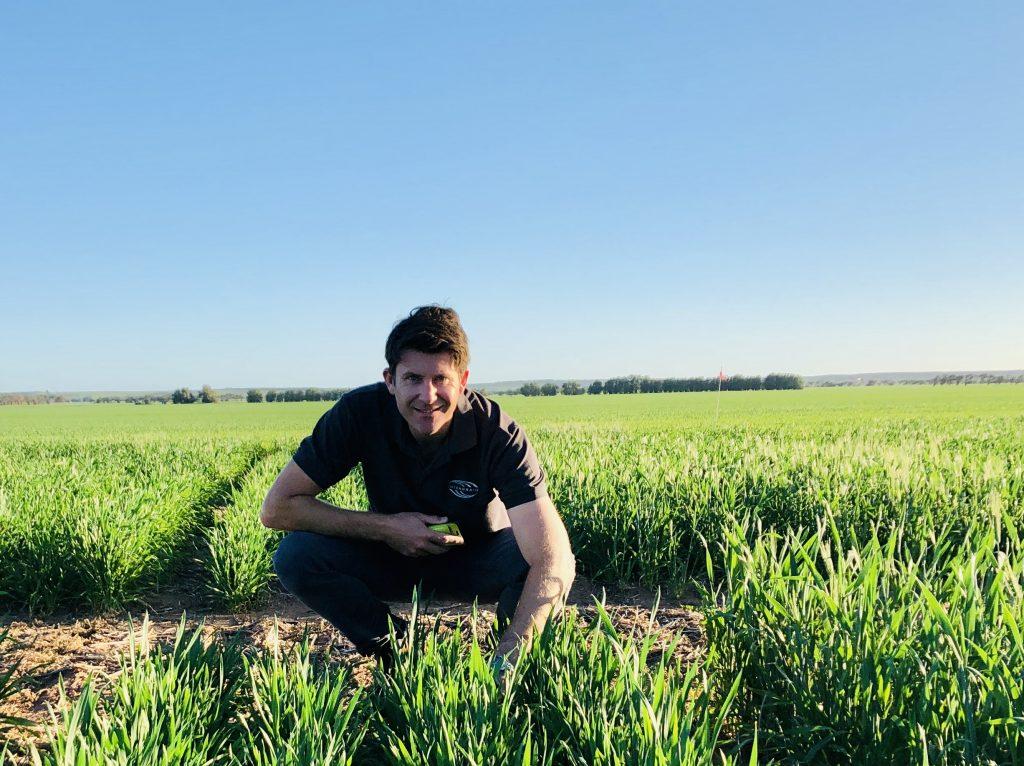 Pictures of Dan Mullan with crops.